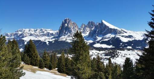 Alpe di Siusi, Val Gardena, Italy