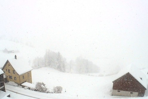 Appenzell, Switzerland – Weather to ski – Snow report, 15 January 2021