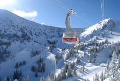 Snowbird Alta ski area, Utah, USA