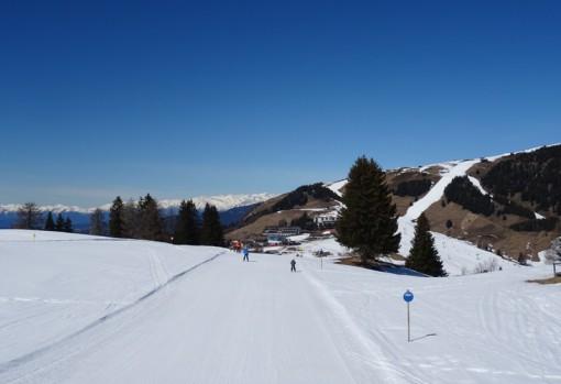 Alpe di Suisi, Val Gardena, Italy