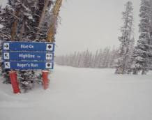 Who got the most snow in North America in 2014-15?